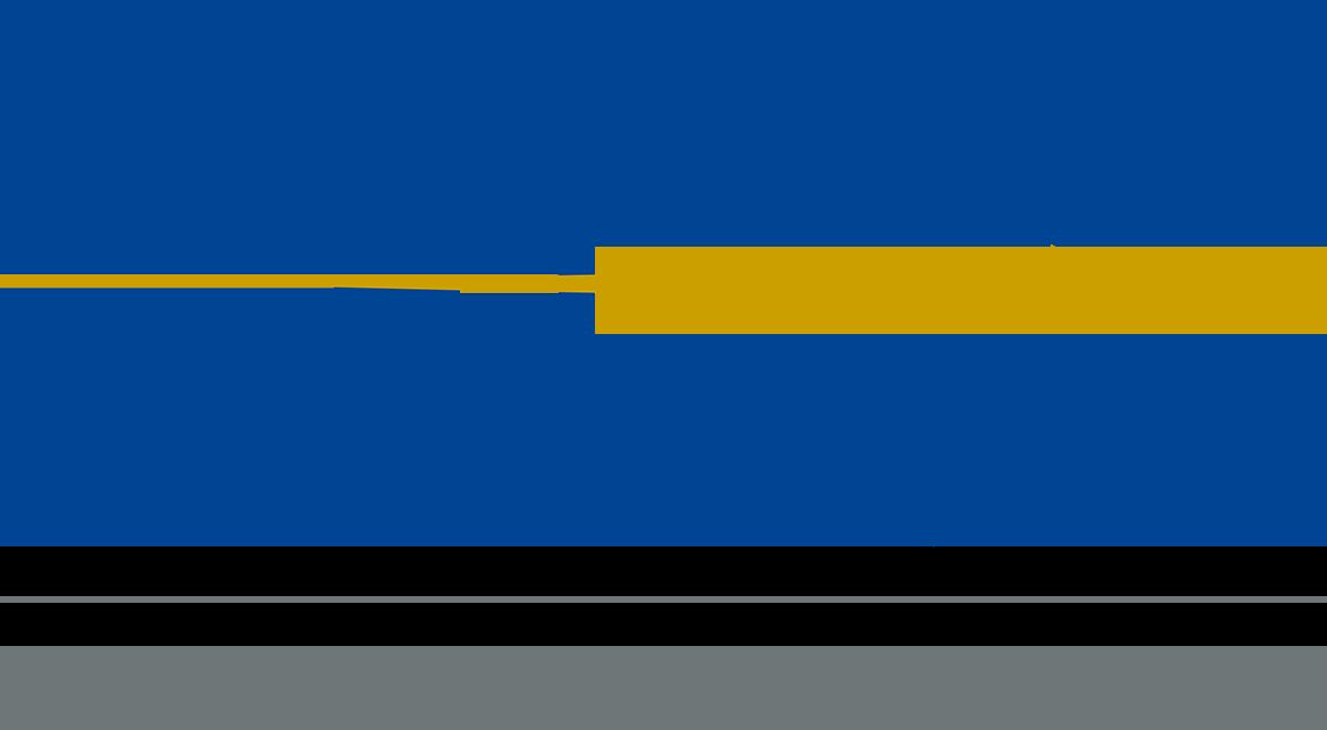 VEC Logo_DEF_RGB_1200px